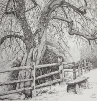 Ink forest landscape drawing by Ned-The-Hat