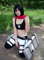 Attack on titan: Mikasa Ackerman by Firmily