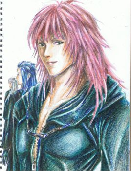 Marluxia and others by Aquarina12