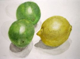 Lemon and Limes by curiousused