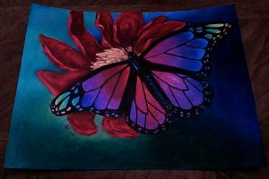 Butterfly Gift by Doctor-Axel