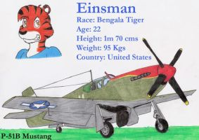 Einsman and his P-51B by DingoPatagonico