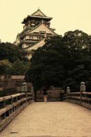 Osaka Castle by mcastiello