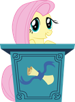 Podium - Fluttershy by TomFraggle