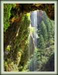 Weeping Rock by papatheo