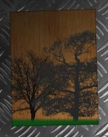 Wood with Metal Bars 2 by D3L1GHT