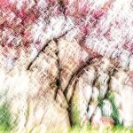 The Colors of Spring I by vamosver