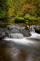 Sweet Creek-Autumn by 11thDimensionPhoto