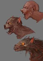 Werewolf transform by Ace by Nathan123qwe