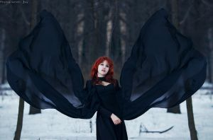 Black Wings by ilona-lab
