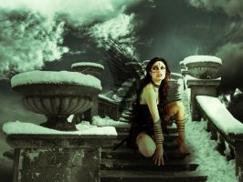 WinterSky by boliarka