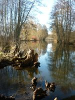 Nature Reserve Wakenitz by lmsgblh