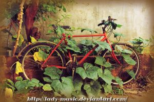 Bike by Lady-Music