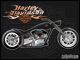 Harley Davidson Customs by atot806