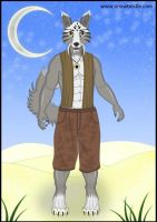 Male Wolf Furry Doll Art by Snowbristle