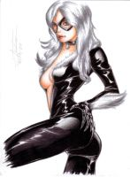 Felicia Hardy -Black Cat- by Alpha-Step