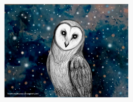 Barn Owl by love-a-lad-insane