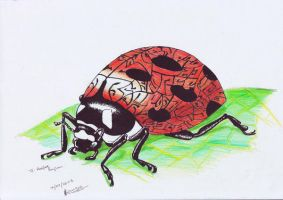Refaat Name Ladybug by FATRATKING