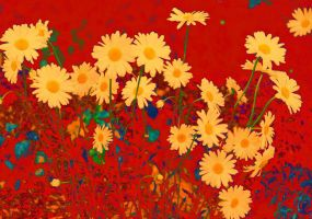 Pop Art Daisies by Tailgun2009