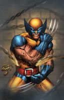 Wolvie by DontBornInInk