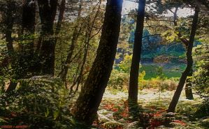 The Magic of Aldeias, Serra de Estrela, Portugal by Tigles1Artistry