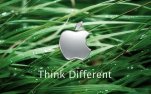 Apple 'Think different' Wall by tamaiide
