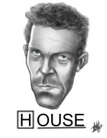 House by ccobb1234