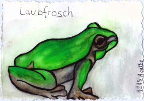 Laubfrosch 001 by Ka-Kind