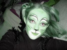 Cats Makeup: Green by Mystitat