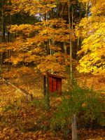 A Brookside Cabin : Outhouse by DJCandiDout
