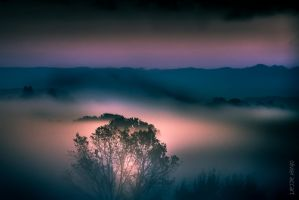 Phosphorescence by OlivierAccart