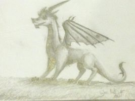 A Dragon by wolfgirl1723