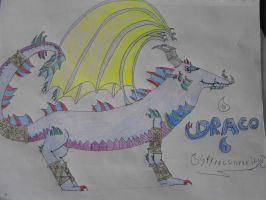 Draco the Water Dragon by Spyroconvexity