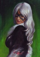 Black Cat SM archives 10 by charles-hall