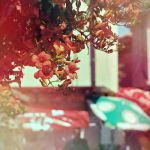 Rainbow veins by disposable-heroX