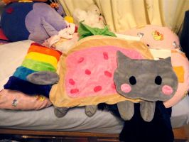 Nyancat pillow plushie WIP 2 by Shattered-Earth