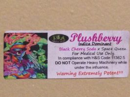 'Plushberry Bong' Medicinal Label by RainbowDash420