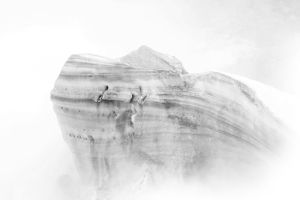 Giant in the Mist by JewItUp