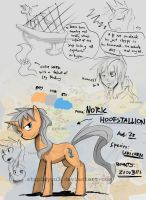 Reference Sheet: Noric by stupidyou3