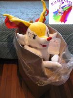 braixen plush 1mt by chocoloverx3