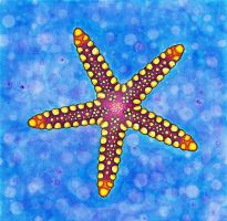 Necklace Starfish by Anna-Atomic