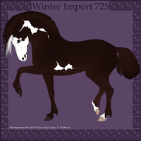 Winter Import 725 by Psynthesis