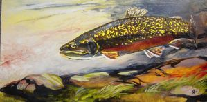 brook trout by mountaintrout