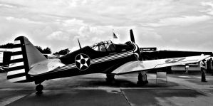 Paul's North American P-64 by NeverEndingAdventres