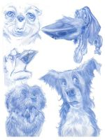 Animal Caricatures No. 1 by SuperStinkWarrior