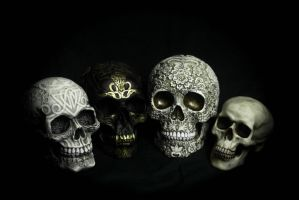 My larger skull collection! by Thebluetooter