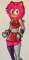 Amy Rose (Sonic Boom Look) by MasterMcCraig1982
