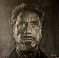 Robert Downey Jr by Lukas-C