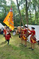 Cannock Chase Military History Weekend 2015 (19) by masimage