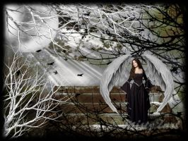 Dark Angel by MistyZart